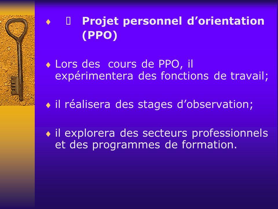 Projet personnel dorientation (PPO) Lors des cours de PPO, il expérimentera des fonctions de travail; il réalisera des stages dobservation; il explorera des secteurs professionnels et des programmes de formation.