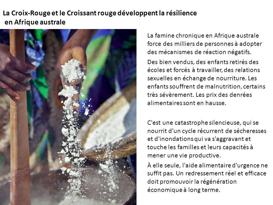 La Croix-Rouge et le Croissant rouge développent la résilience en Afrique australe La famine chronique en Afrique australe force des milliers de personnes à adopter des mécanismes de réaction négatifs.