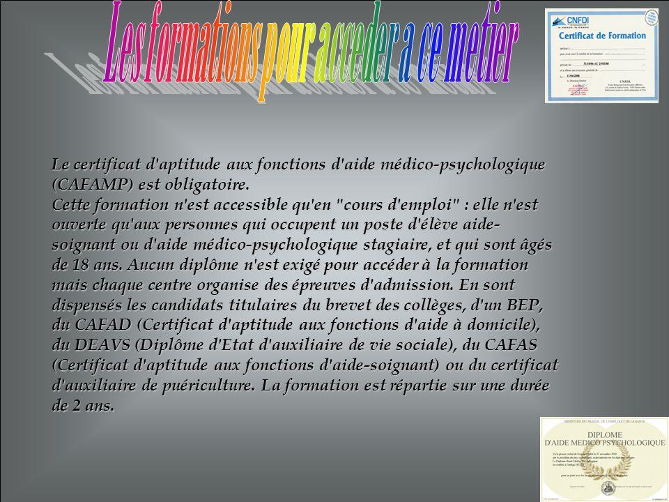 Le certificat d'aptitude aux fonctions d'aide médico-psychologique (CAFAMP) est obligatoire. Cette formation n'est accessible qu'en