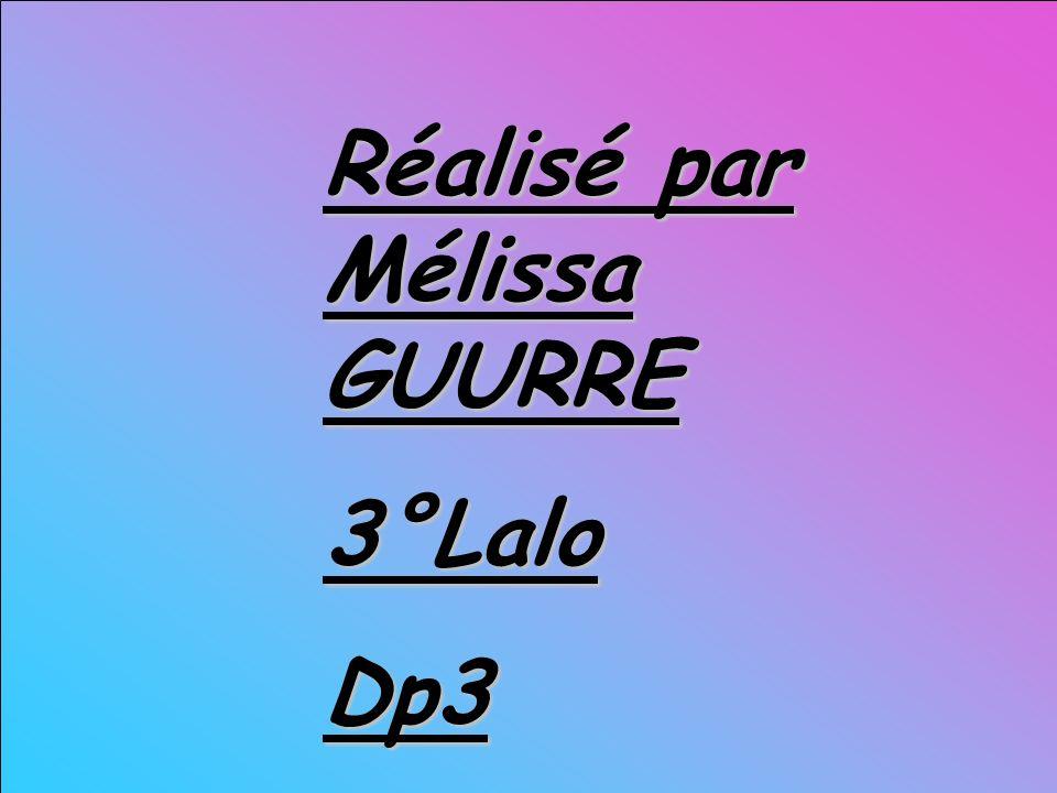 Réalisé par Mélissa GUURRE 3°Lalo Dp3