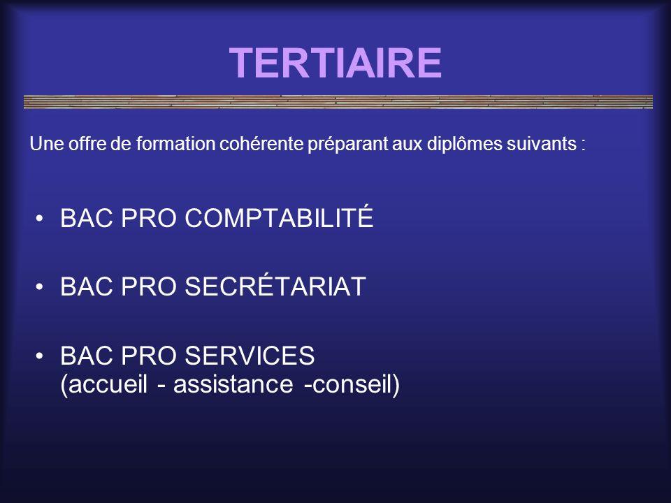 TERTIAIRE BAC PRO COMPTABILITÉ BAC PRO SECRÉTARIAT BAC PRO SERVICES (accueil - assistance -conseil) Une offre de formation cohérente préparant aux dip