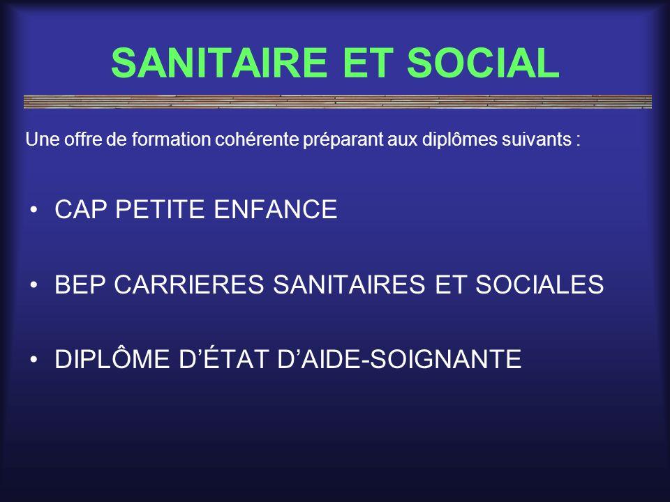 SANITAIRE ET SOCIAL CAP PETITE ENFANCE BEP CARRIERES SANITAIRES ET SOCIALES DIPLÔME DÉTAT DAIDE-SOIGNANTE Une offre de formation cohérente préparant a
