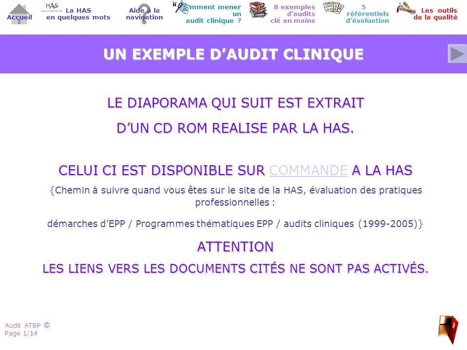 ©© Accueil 5 référentiels dévaluation Comment mener un audit clinique ? Les outils de la qualité 8 exemples daudits clé en mains Aide à la navigation