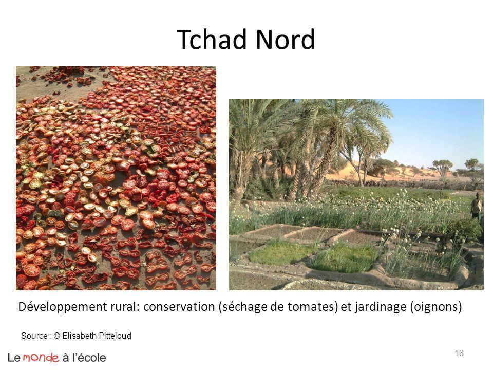 16 Développement rural: conservation (séchage de tomates) et jardinage (oignons) Source : © Elisabeth Pitteloud Tchad Nord