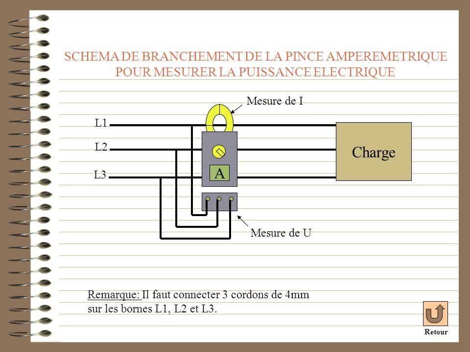 SCHEMA DE BRANCHEMENT DE LA PINCE AMPEREMETRIQUE POUR MESURER LA PUISSANCE ELECTRIQUE L2 L1 Charge Remarque: Il faut connecter 3 cordons de 4mm sur le