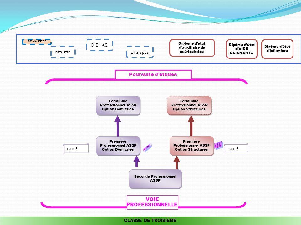 DE de CESF BTS ESF Poursuite détudes Seconde Professionnel ASSP Première Professionnel ASSP Option Domiciles Première Professionnel ASSP Option Domici
