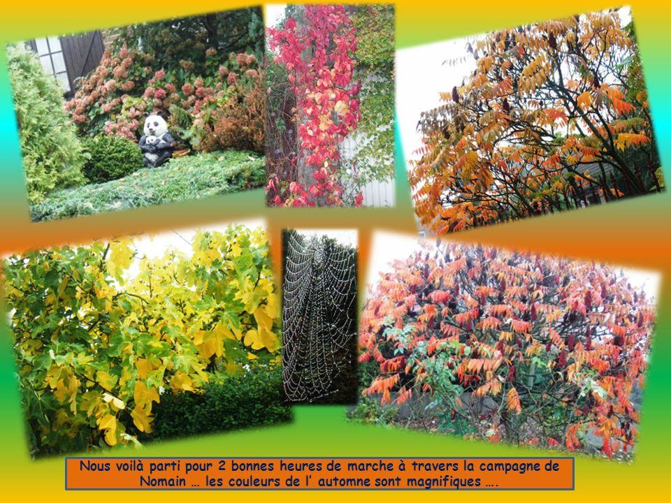 Nous voilà parti pour 2 bonnes heures de marche à travers la campagne de Nomain … les couleurs de l automne sont magnifiques ….