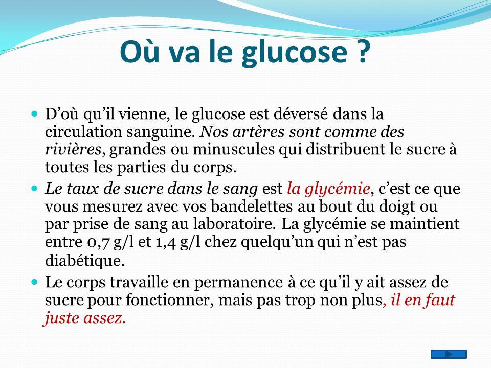 Où va le glucose ? Doù quil vienne, le glucose est déversé dans la circulation sanguine. Nos artères sont comme des rivières, grandes ou minuscules qu