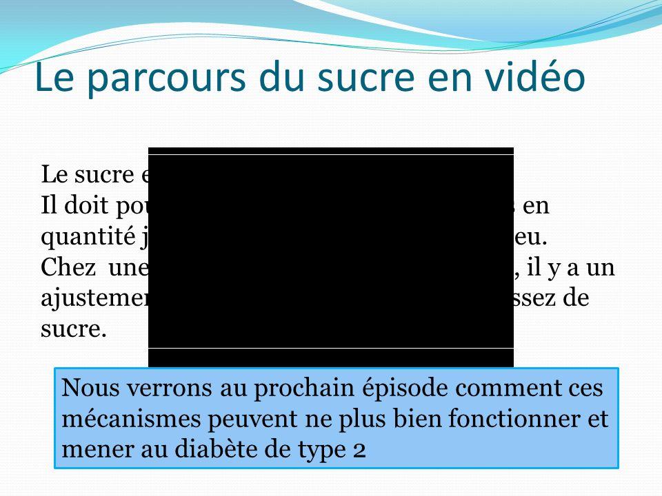 Le parcours du sucre en vidéo Nous verrons au prochain épisode comment ces mécanismes peuvent ne plus bien fonctionner et mener au diabète de type 2 L