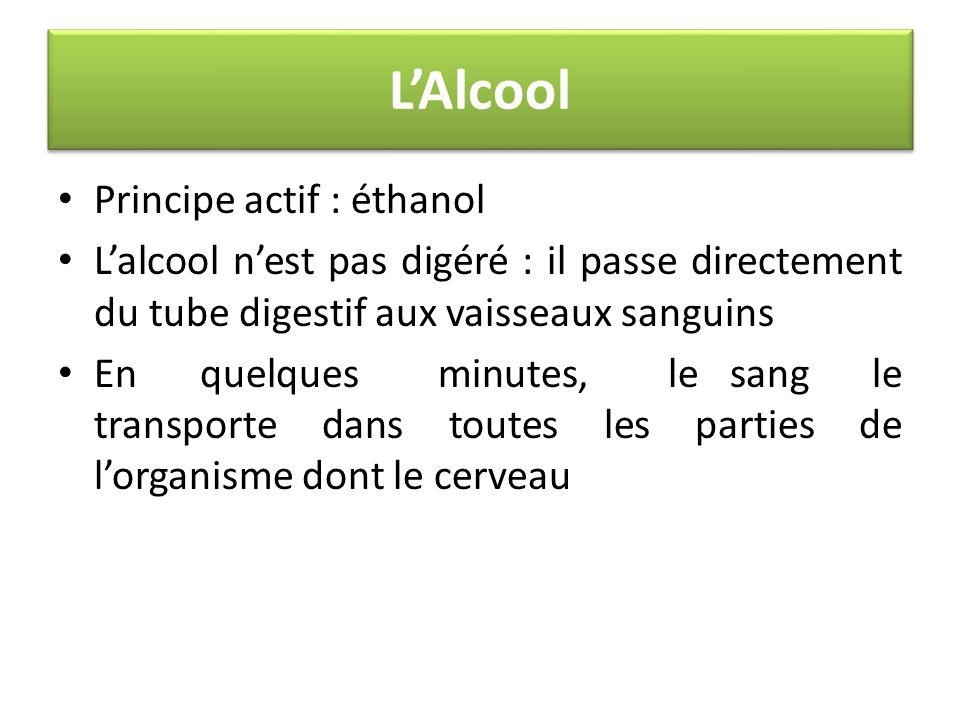 LAlcool Principe actif : éthanol Lalcool nest pas digéré : il passe directement du tube digestif aux vaisseaux sanguins En quelques minutes, le sang l