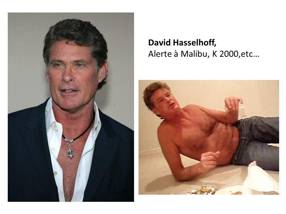 David Hasselhoff, Alerte à Malibu, K 2000,etc…