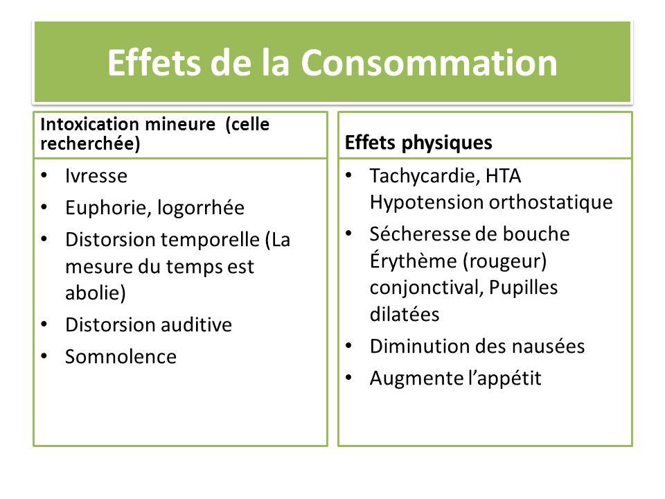 Effets de la Consommation Intoxication mineure (celle recherchée) Ivresse Euphorie, logorrhée Distorsion temporelle (La mesure du temps est abolie) Di