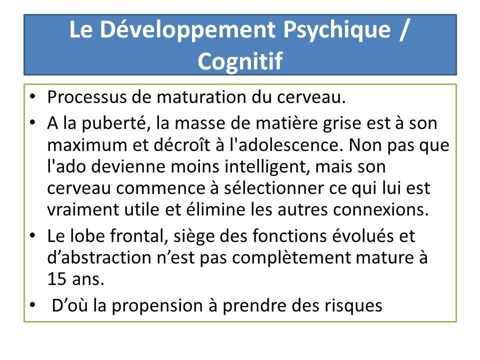 Le Développement Psychique / Cognitif Processus de maturation du cerveau. A la puberté, la masse de matière grise est à son maximum et décroît à l'ado