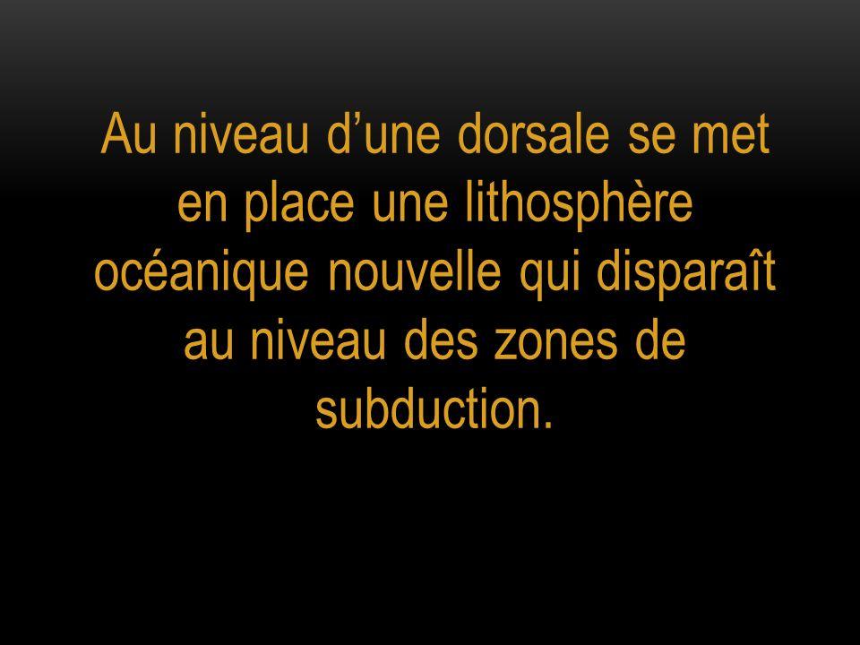 Au niveau dune dorsale se met en place une lithosphère océanique nouvelle qui disparaît au niveau des zones de subduction.