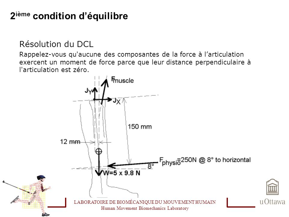 2 ième condition déquilibre Résolution du DCL Rappelez-vous qu'aucune des composantes de la force à larticulation exercent un moment de force parce qu