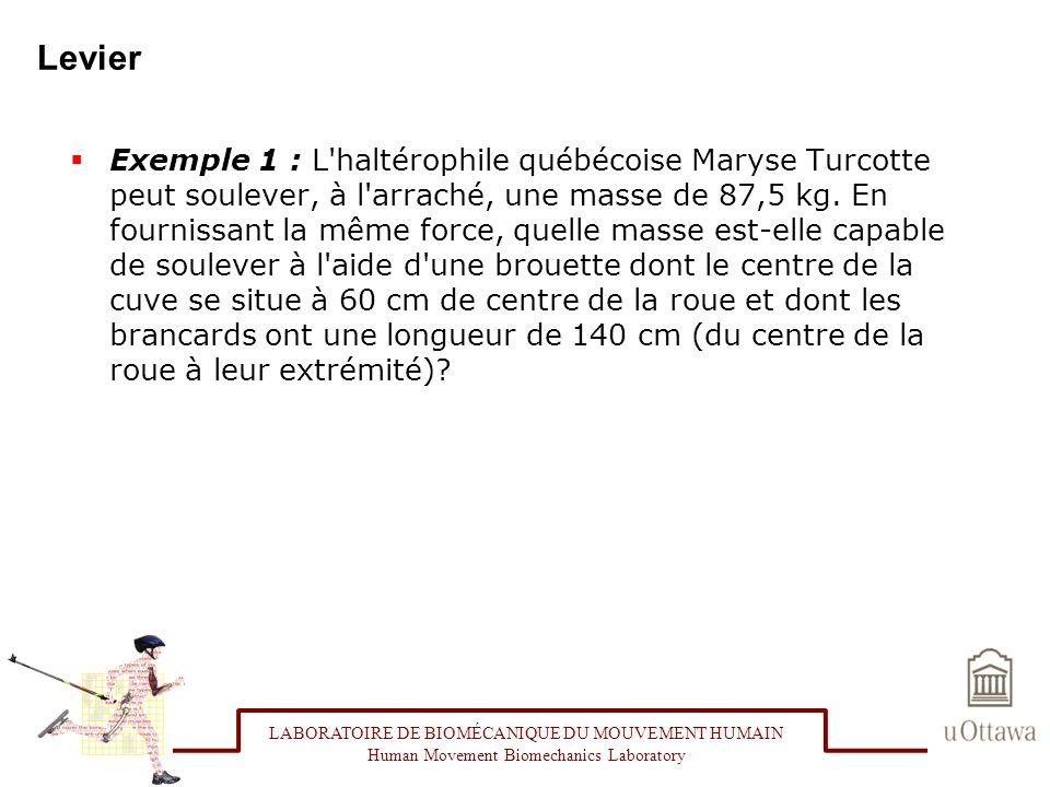 Levier Exemple 1 : L'haltérophile québécoise Maryse Turcotte peut soulever, à l'arraché, une masse de 87,5 kg. En fournissant la même force, quelle ma