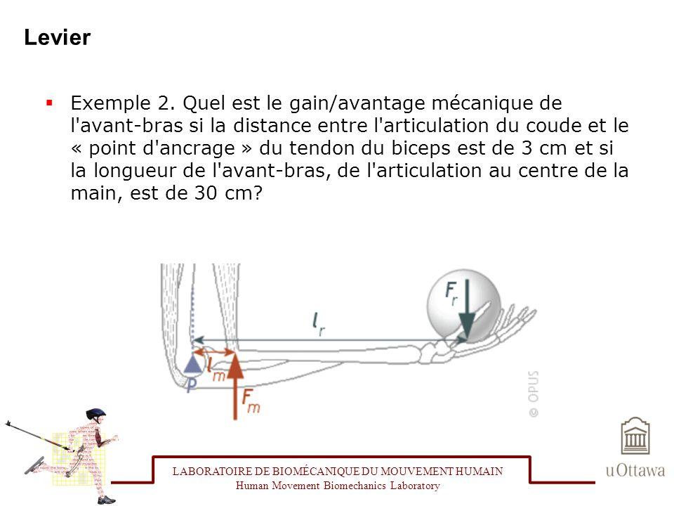 Levier Exemple 2. Quel est le gain/avantage mécanique de l'avant-bras si la distance entre l'articulation du coude et le « point d'ancrage » du tendon
