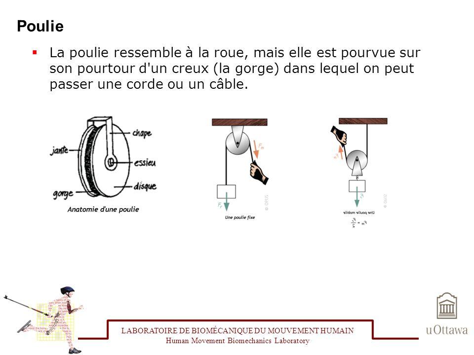 Poulie La poulie ressemble à la roue, mais elle est pourvue sur son pourtour d'un creux (la gorge) dans lequel on peut passer une corde ou un câble. L