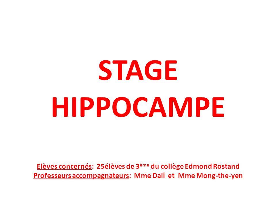 STAGE HIPPOCAMPE Elèves concernés: 25élèves de 3 ème du collège Edmond Rostand Professeurs accompagnateurs: Mme Dali et Mme Mong-the-yen