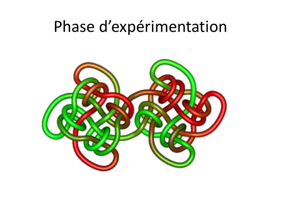 Phase dexpérimentation