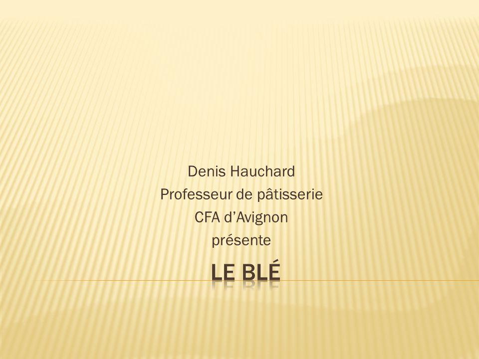 Denis Hauchard Professeur de pâtisserie CFA dAvignon présente