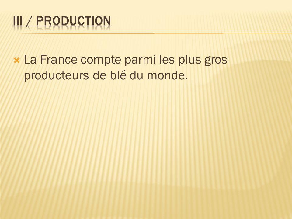 La France compte parmi les plus gros producteurs de blé du monde.