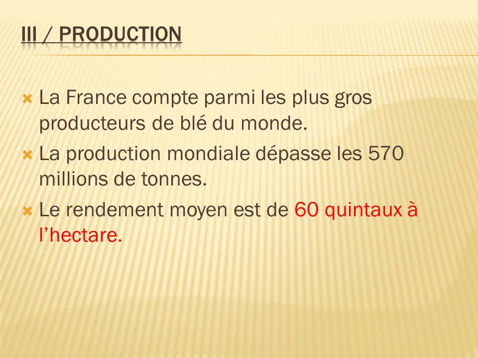 La France compte parmi les plus gros producteurs de blé du monde. La production mondiale dépasse les 570 millions de tonnes. Le rendement moyen est de