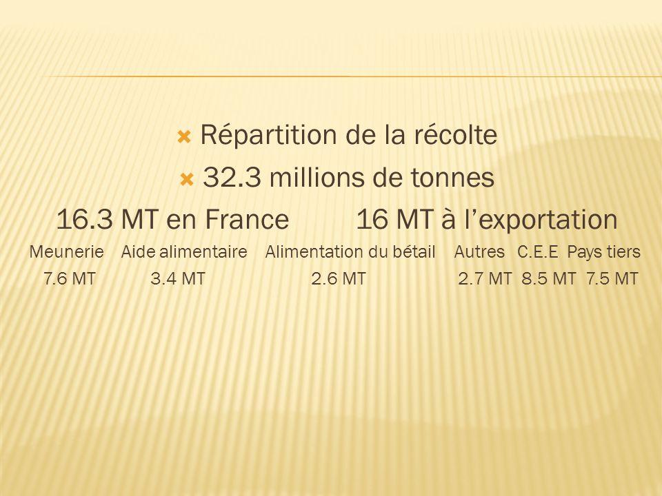 Répartition de la récolte 32.3 millions de tonnes 16.3 MT en France 16 MT à lexportation Meunerie Aide alimentaire Alimentation du bétail Autres C.E.E
