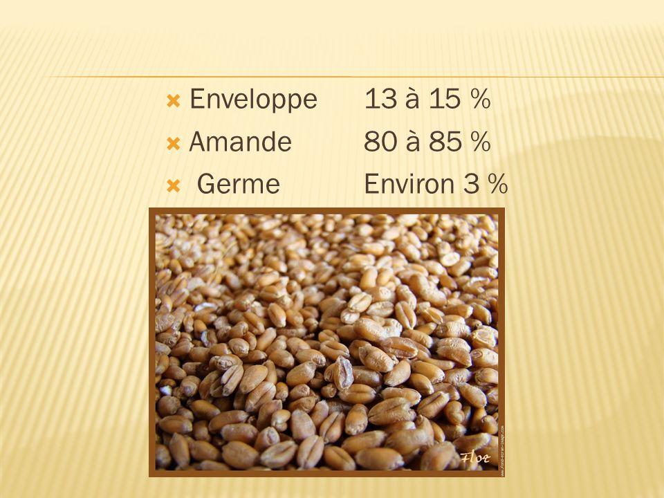 Enveloppe13 à 15 % Amande80 à 85 % GermeEnviron 3 %