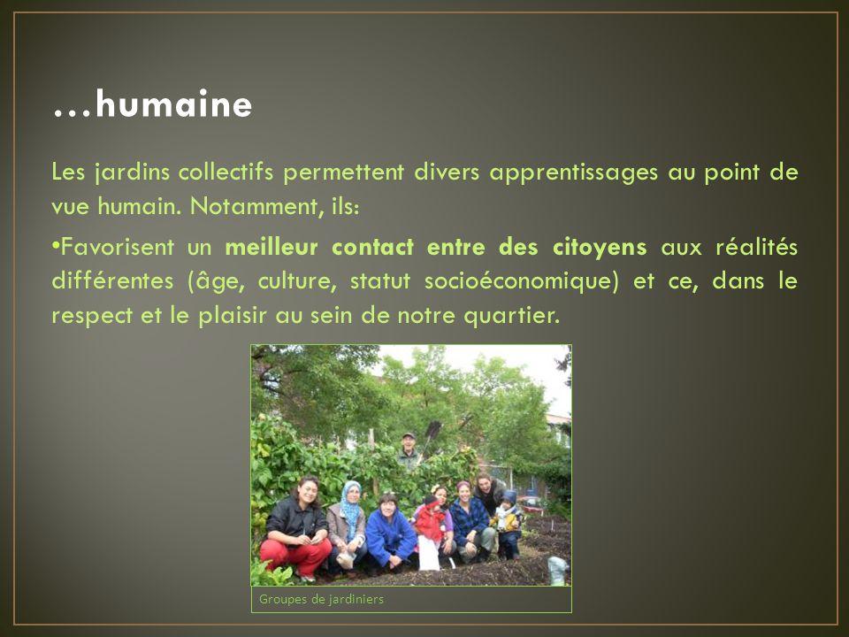 …humaine Les jardins collectifs permettent divers apprentissages au point de vue humain.