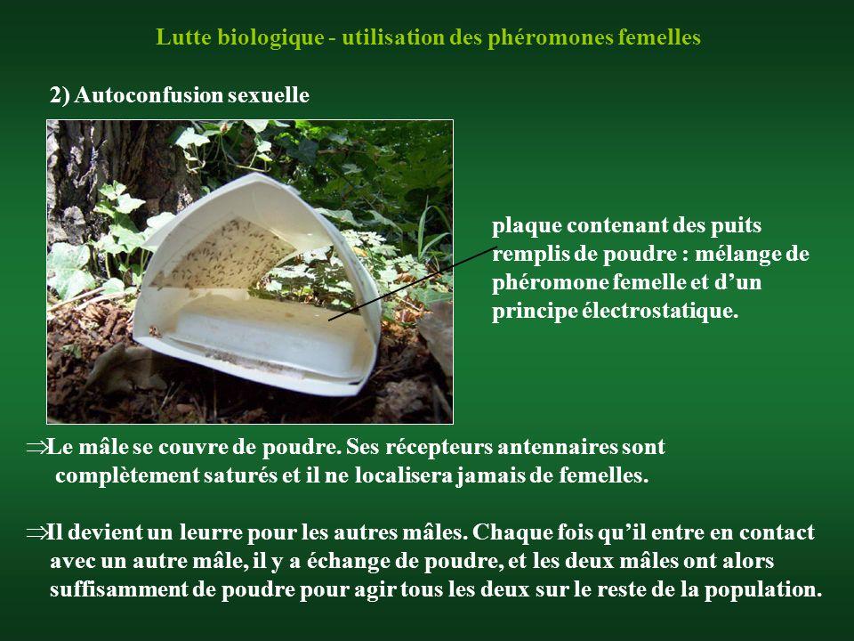 Lutte biologique - utilisation des phéromones femelles 2) Autoconfusion sexuelle plaque contenant des puits remplis de poudre : mélange de phéromone f