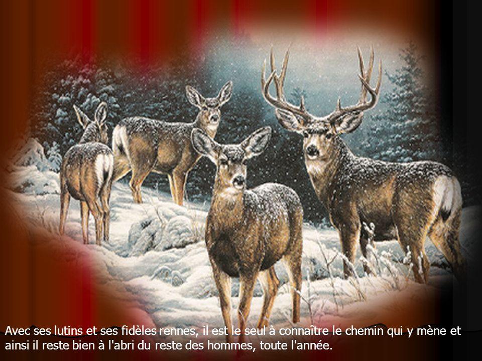 Il y a peu d'habitants, il y fait parfois très froid et il y a souvent beaucoup de neige ! Le Père Noël a bâti sa maison ainsi que ses ateliers sur le