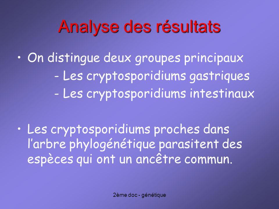 2ème doc - génétique Analyse des résultats On distingue deux groupes principaux - Les cryptosporidiums gastriques - Les cryptosporidiums intestinaux L