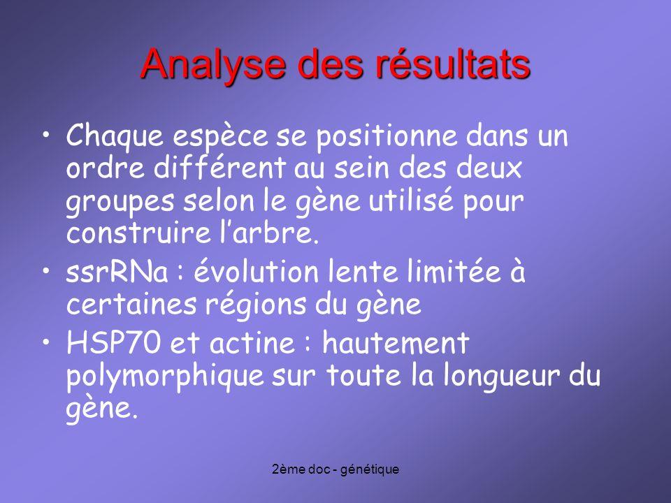 2ème doc - génétique Analyse des résultats Chaque espèce se positionne dans un ordre différent au sein des deux groupes selon le gène utilisé pour con