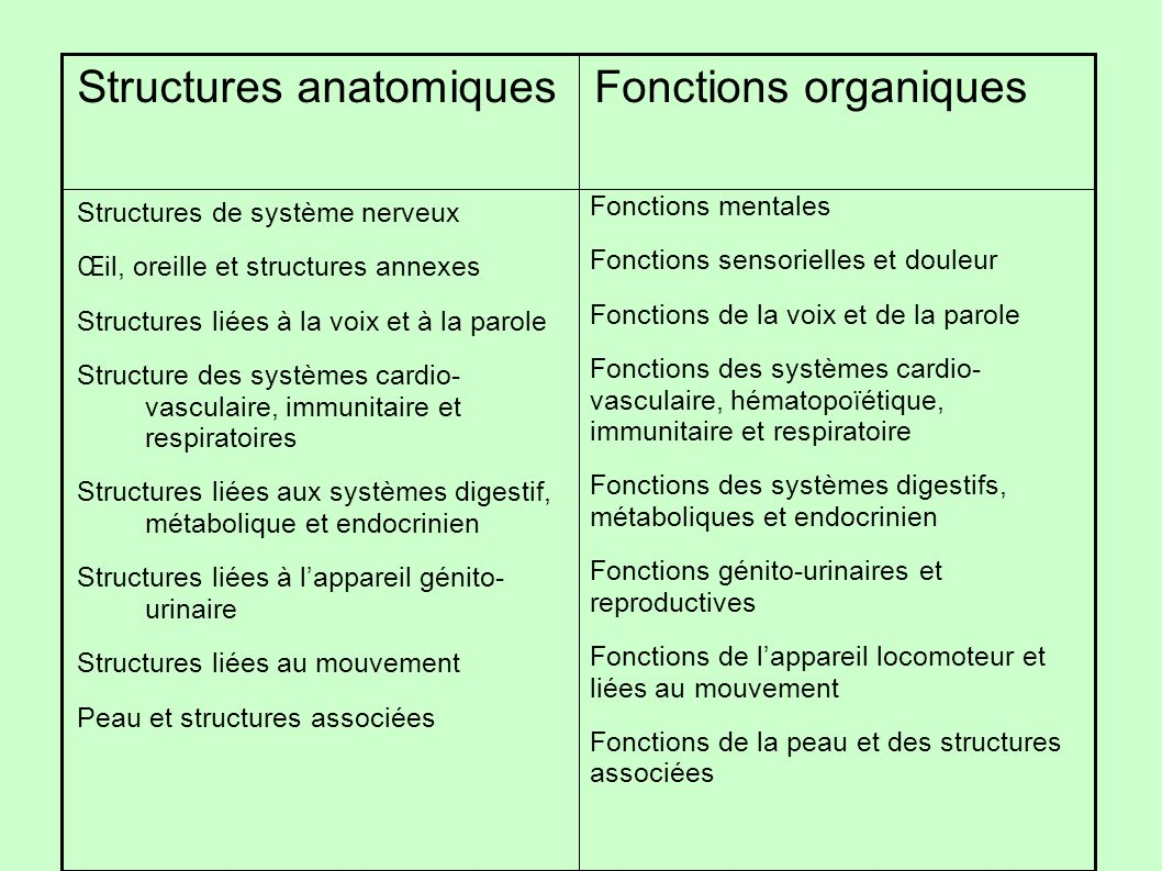 Structures de système nerveux Œil, oreille et structures annexes Structures liées à la voix et à la parole Structure des systèmes cardio- vasculaire,