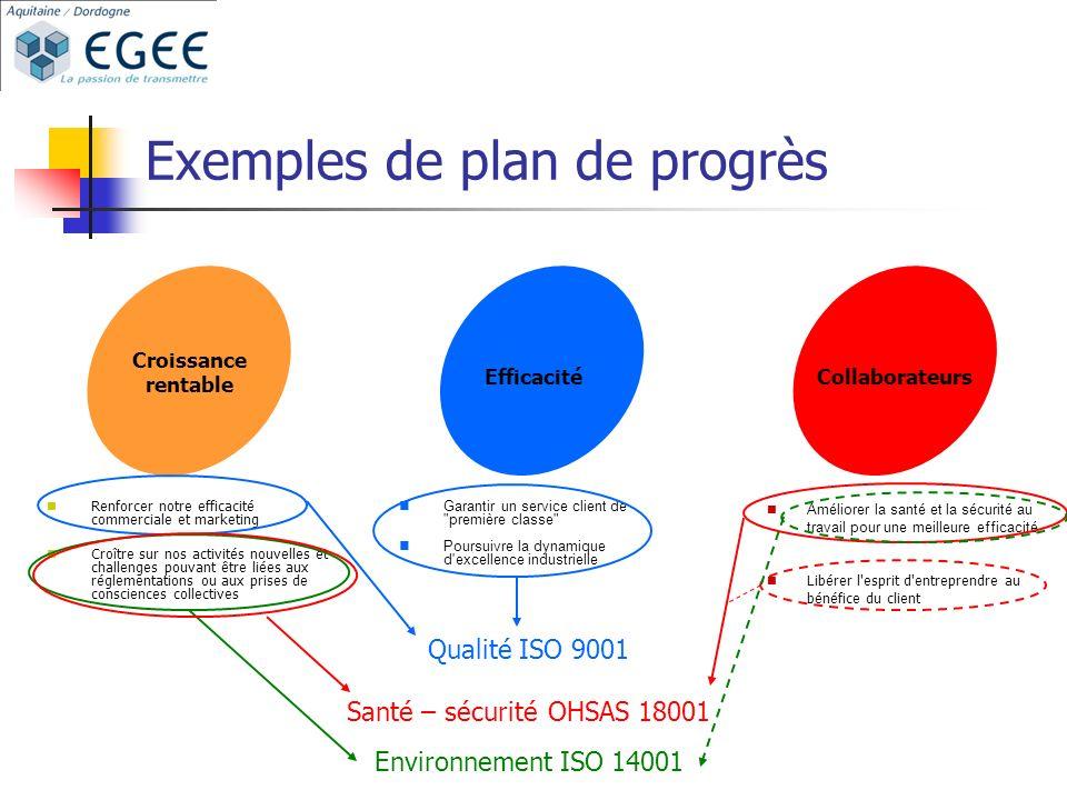 Exemples de plan de progrès Croissance rentable EfficacitéCollaborateurs Renforcer notre efficacité commerciale et marketing Croître sur nos activités nouvelles et challenges pouvant être liées aux réglementations ou aux prises de consciences collectives Garantir un service client de première classe Poursuivre la dynamique d excellence industrielle Améliorer la santé et la sécurité au travail pour une meilleure efficacité Libérer l esprit d entreprendre au bénéfice du client Qualité ISO 9001 Santé – sécurité OHSAS 18001 Environnement ISO 14001