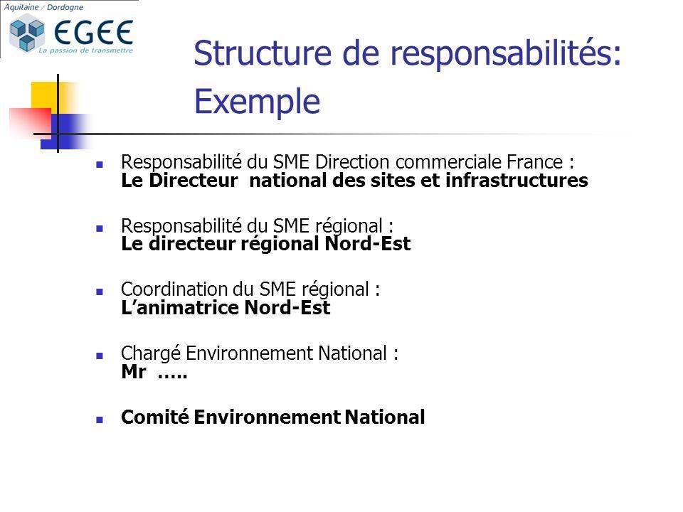 Structure de responsabilités: Exemple Responsabilité du SME Direction commerciale France : Le Directeur national des sites et infrastructures Responsa