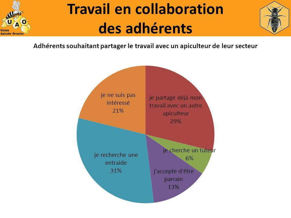 Travail en collaboration des adhérents