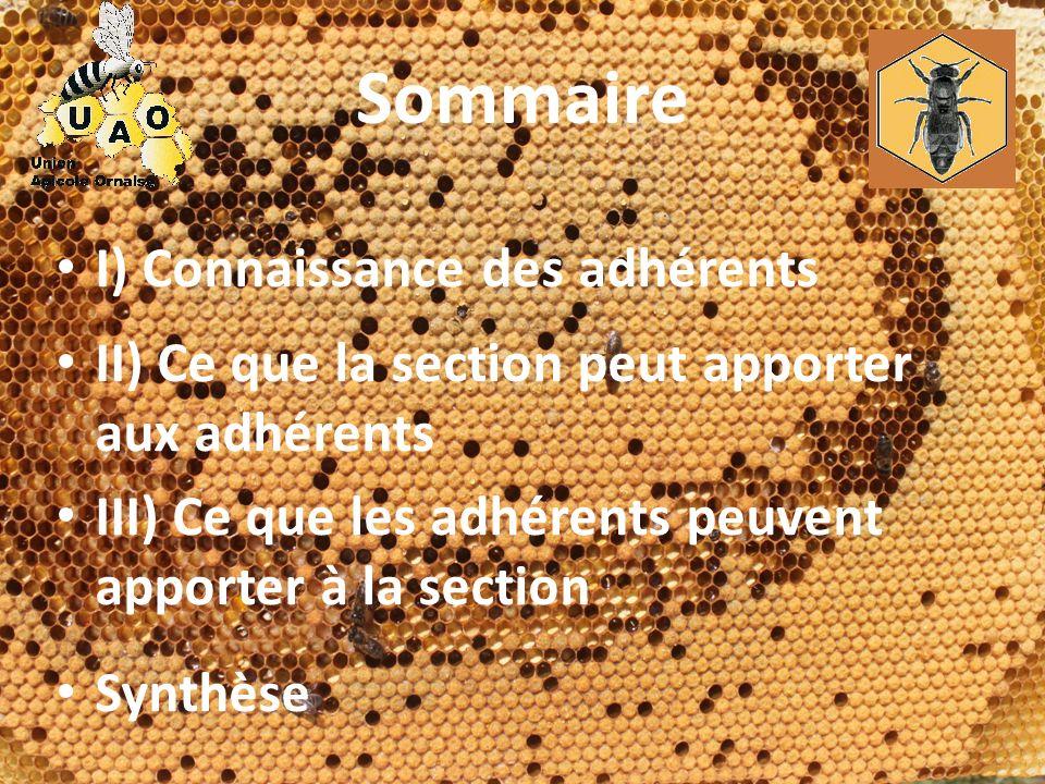 Sommaire I) Connaissance des adhérents II) Ce que la section peut apporter aux adhérents III) Ce que les adhérents peuvent apporter à la section Synth