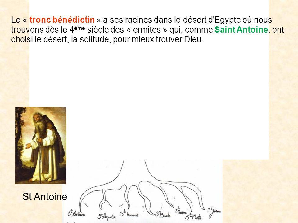 Citeaux Lérins Cluny Sénanque Clerlande Clairvaux Maredsous BrechtOrval Makkyad Chimay 111111111111111111111111 St Antoine Le « tronc bénédictin » a s