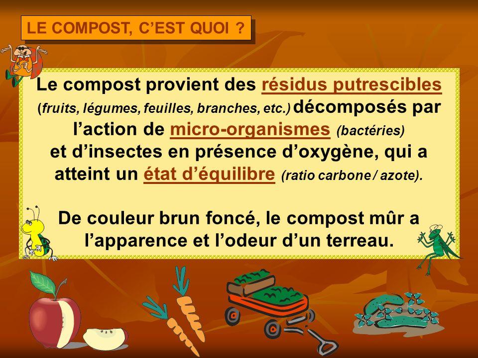 DÉROULEMENT DE LA PRÉSENTATION Le compost, cest quoi ? Pourquoi faire du compost ? Les rudiments du compostage Léquilibre, la clé du succès Les grands