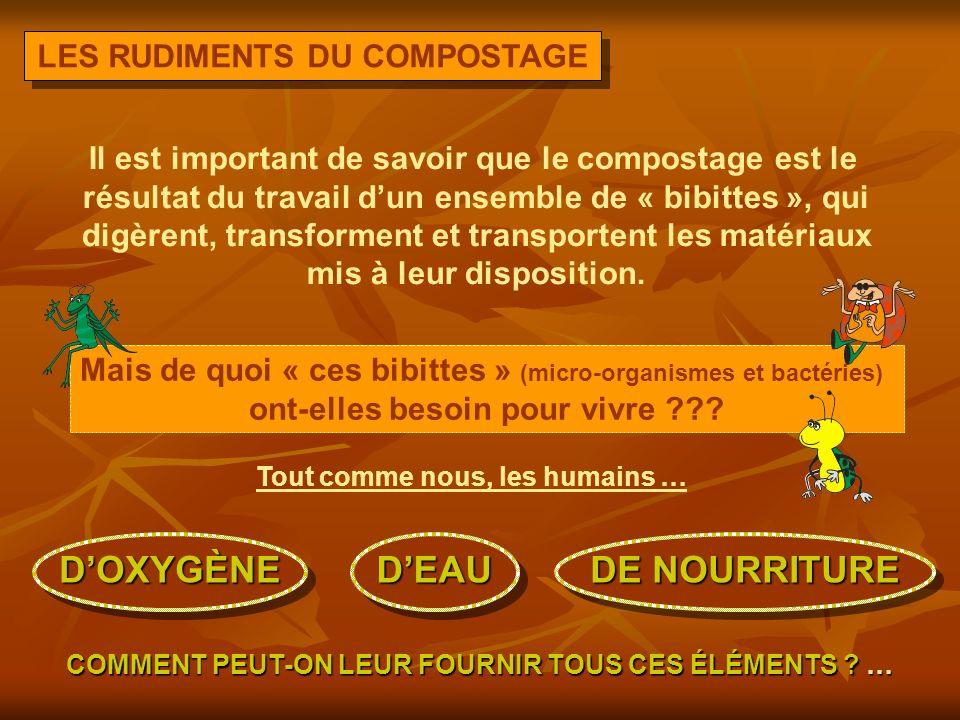 LES RUDIMENTS DU COMPOSTAGE Il est important de savoir que le compostage est le résultat du travail dun ensemble de « bibittes », qui digèrent, transforment et transportent les matériaux mis à leur disposition.