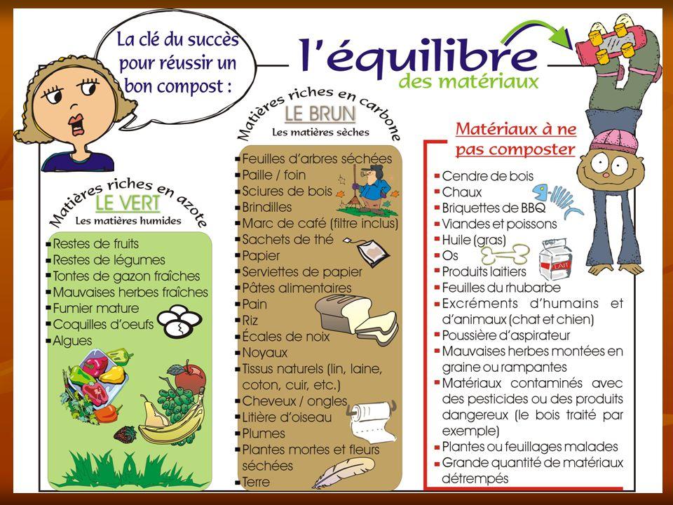 LA NOURRITURE DES « BIBITTES » … … NOS DÉCHETS ! La matière organique constitue le matériau de base pour effectuer le compostage. Il sagit de substanc