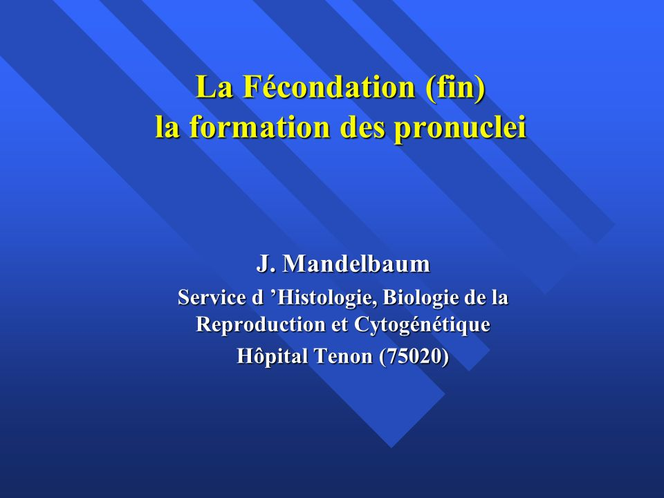 La Fécondation (fin) la formation des pronuclei J. Mandelbaum Service d Histologie, Biologie de la Reproduction et Cytogénétique Hôpital Tenon (75020)
