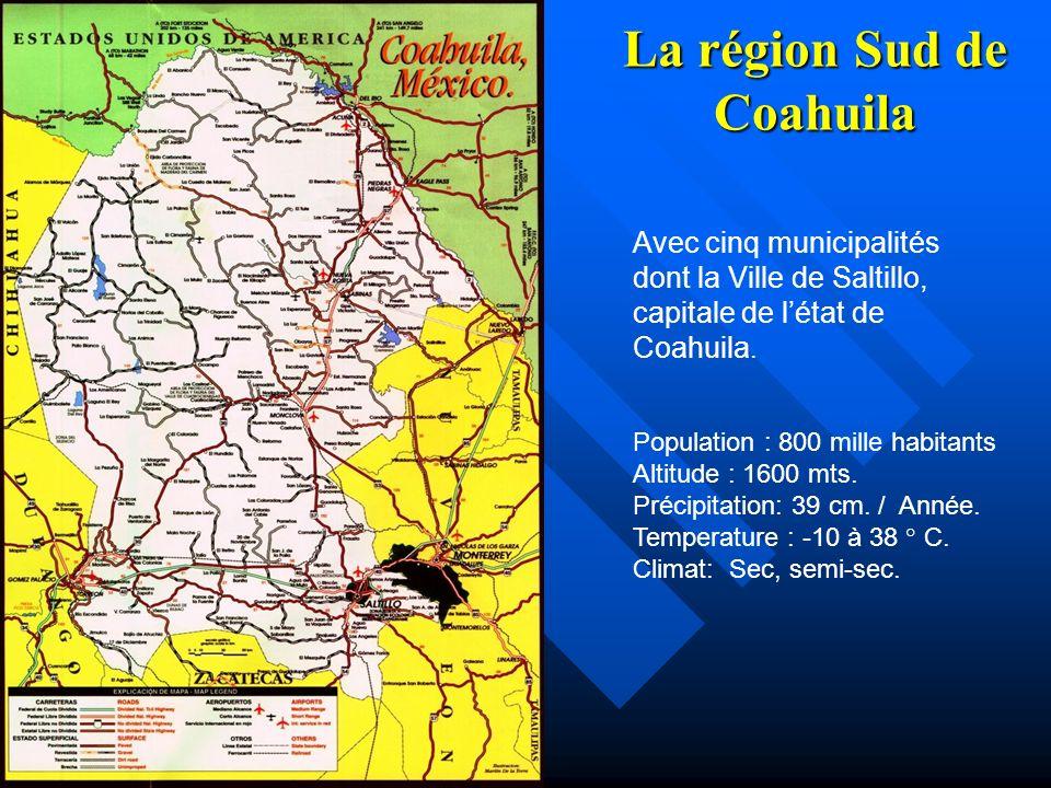 La région Sud de Coahuila, au Nord-Est du Mexique La région du cas détude se place au Sud de létat de Coahuila, au Nord-est du Mexique, dans la zone frontalière avec les Etats- Unis, à 65 Km.