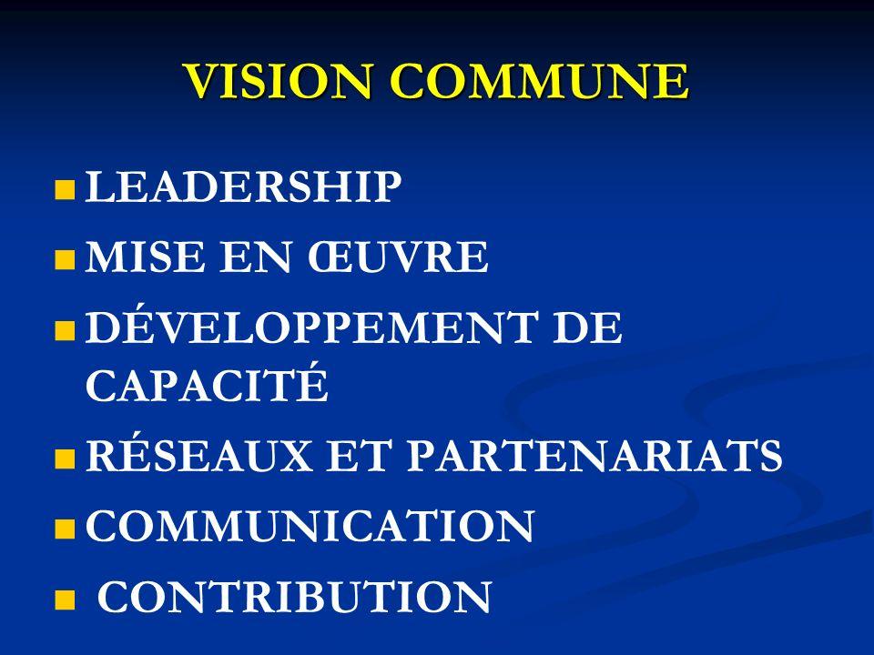VISION COMMUNE LEADERSHIP MISE EN ŒUVRE DÉVELOPPEMENT DE CAPACITÉ RÉSEAUX ET PARTENARIATS COMMUNICATION CONTRIBUTION