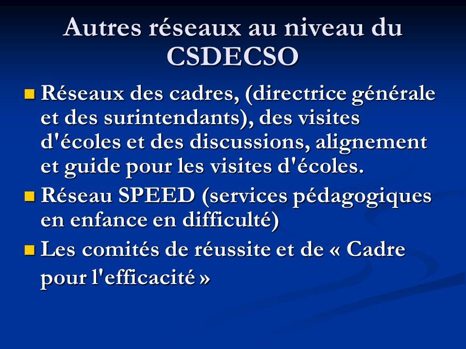 Autres réseaux au niveau du CSDECSO Réseaux des cadres, (directrice générale et des surintendants), des visites d'écoles et des discussions, alignemen