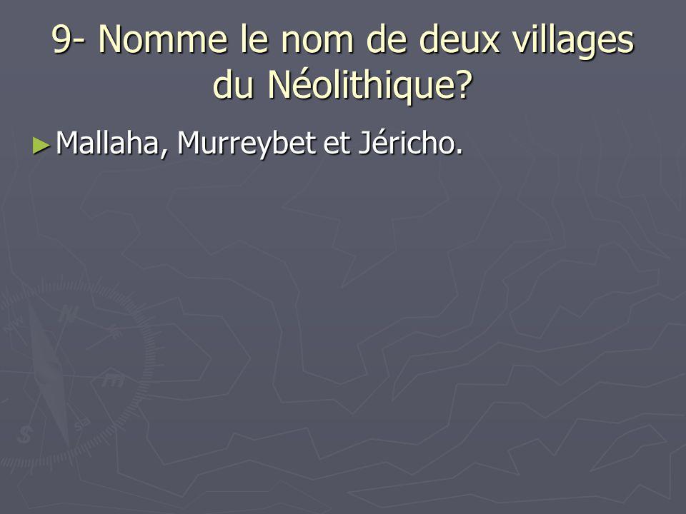 9- Nomme le nom de deux villages du Néolithique? Mallaha, Murreybet et Jéricho. Mallaha, Murreybet et Jéricho.