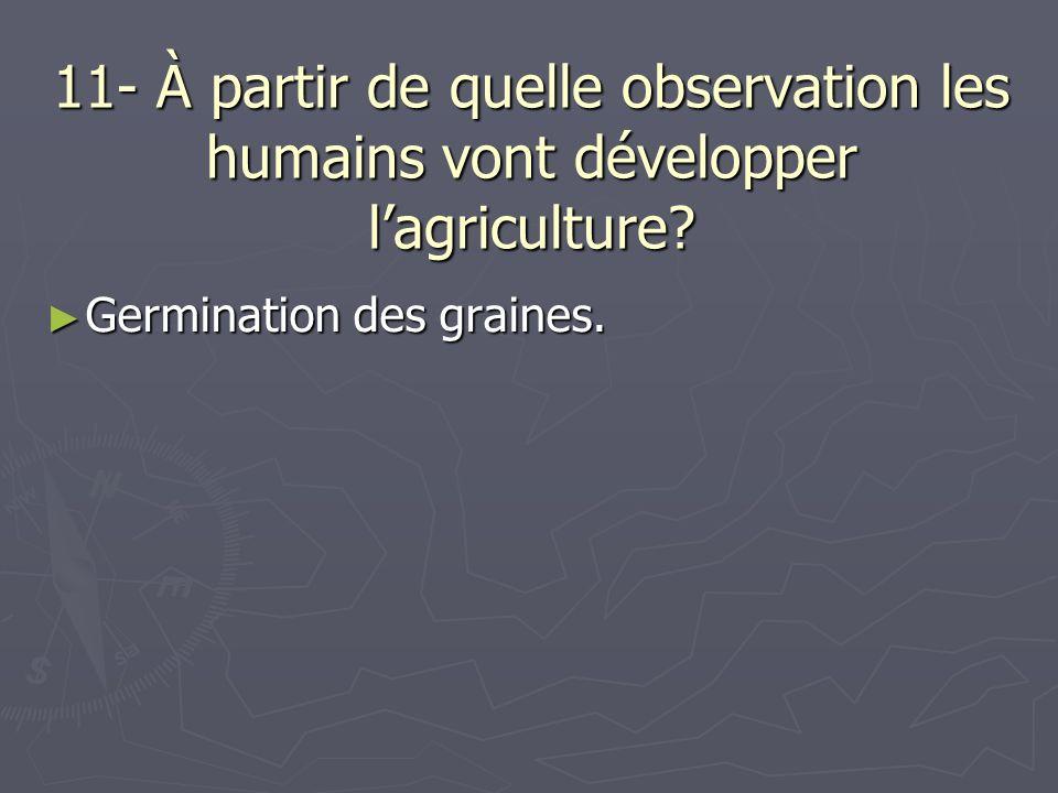 11- À partir de quelle observation les humains vont développer lagriculture? Germination des graines. Germination des graines.