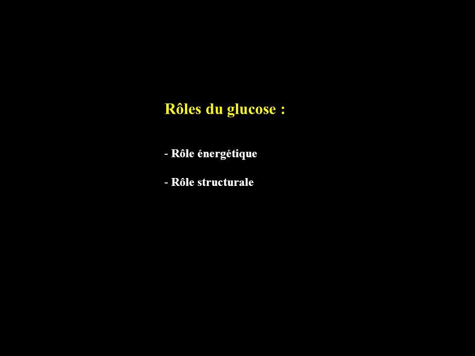 Rôles du glucose : - Rôle énergétique - Rôle structurale